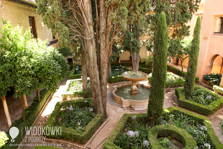 Garden Daraxa. Granada.