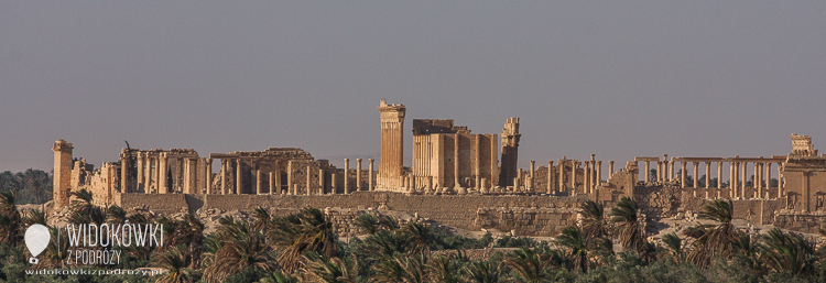 The view from the hotel to Palmyra.