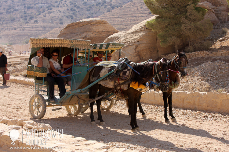 Transport to Petra