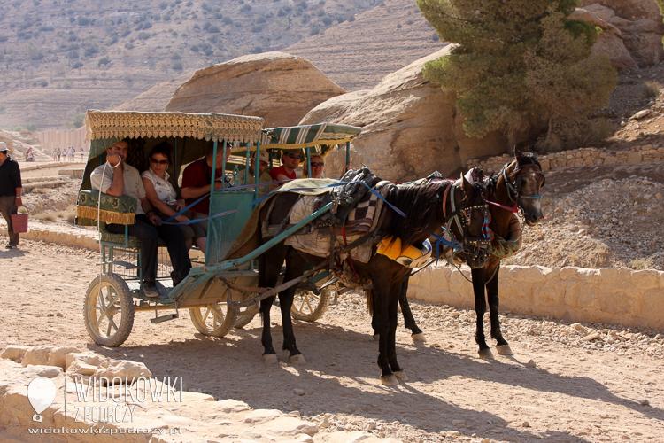 Transport to Petra