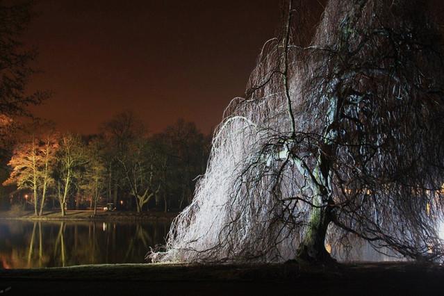 zimowy wieczór światła w Łazienkach III Picasa #271228