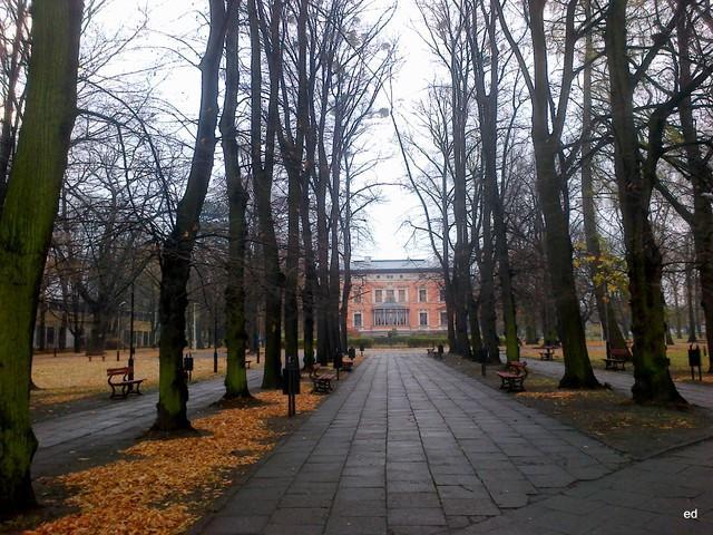 Łódź Picasa #285936