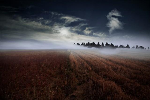 Gdy opadnie mgła... Vviktoria #283988