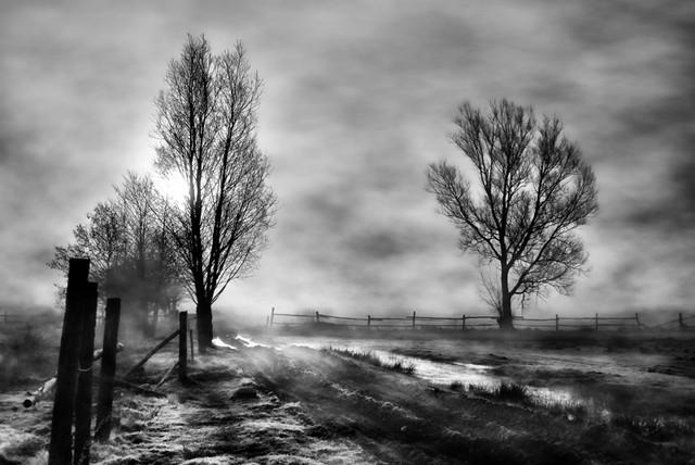 Poranne mgły #1 SONY DSC Sławek Rezerwa #275002