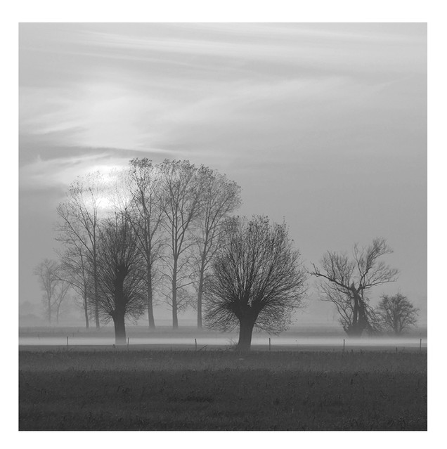 Pawel Plucinski #278016