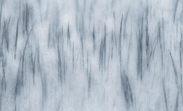 grassss PRZEMEK KIJOWSKI -AUTOR #278560