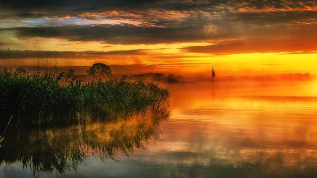 Odra - Domiąża wschód słońca