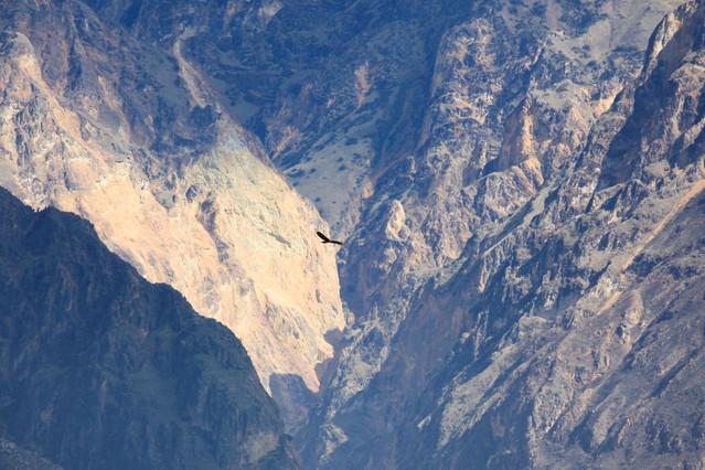 Okolice kanionu Colca. Peru. Okolice kanionu Colca. Peru. Piotr