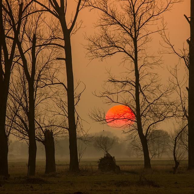Pawel Plucinski #275010